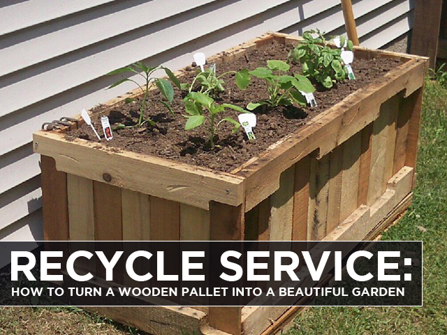 recycle service how to turn a wooden pallet into a