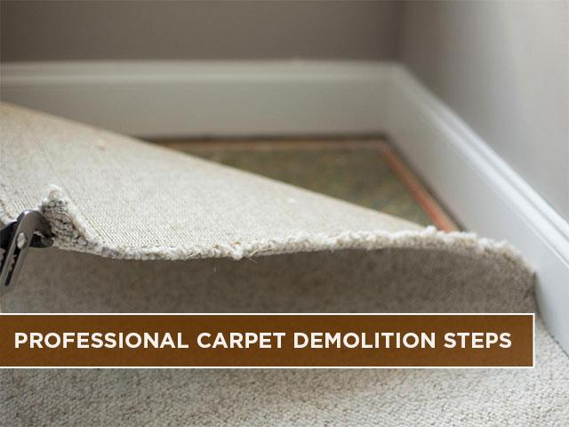 Professional Carpet Demolition Steps